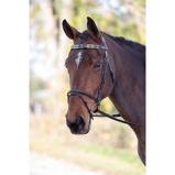 Imagem deBlenheim Browband Polo Leather Purple/geen/Yellow Pony
