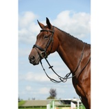 ObrázekCollegiate Martingale Syntovia+ Plain Black Full