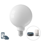 Imagine dinCalex Smart E27 LED G125 7.5W 1055LM 2200K 4000K