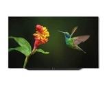Afbeelding vanLoewe Bild 7.55 OLED (incl. WM7) grafietgrijs TV