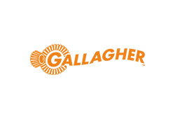 Image of gallagher