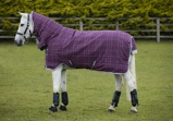 ObrázekRhino Pony All In One heavy with Vari Layer Berry/Grey/White check & grey 400gr