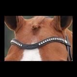ObrázekDyon browband with logo