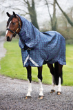 ObrázekRhino Plus Turnout rug with hood pony 200g