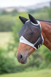 ObrázekShires Fly Mask Fine Mesh with Ears Black Cob