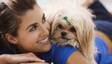 Imagine dinAccredited Animal Psychology Course