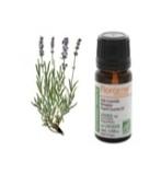 Afbeelding vanFlorame Lavendel Fijn Echt Bio (10ml)