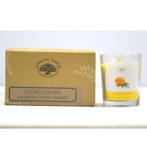 Afbeelding vanGreen Tree Geurkaars Citrus Cedar Votives (55g)