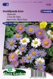 Afbeelding vanBloemenzaad Aster overblijvende gemengd (Alpenaster)