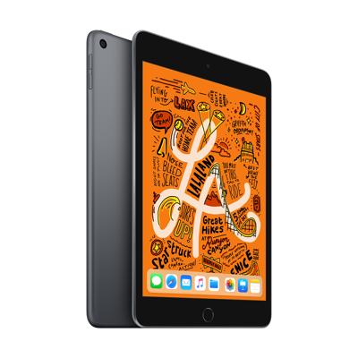 Afbeelding van Apple iPad mini Wi Fi 256GB ( MUU32NF/A) Space Grey
