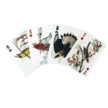 Afbeelding van3D speelkaarten Vogels van Kikkerland