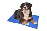 Afbeelding vanKoelmat voor honden 120x80 cm
