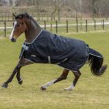 Afbeelding vanBucas Anniversary Turnout 150gr Stay Dry Winterdeken Paardendekens 115/152cm