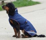 Afbeelding vanBucas Recuptex Therapy Dog Rug navy blauw/orange 55