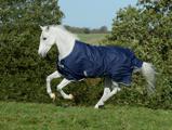 Afbeelding vanBucas Freedom Turnout 300 Paardendekens 125/168cm