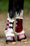 Afbeelding vanHB Gold Rush Glitter Trainingboots Little sizes Burgundy 4XS