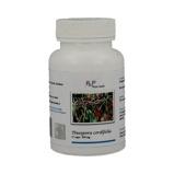 Afbeelding vanPhyto Health Tinospora cordifolia (60 capsules)