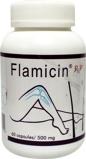 Afbeelding vanPhyto Health Flamicin (60 capsules)