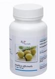 Afbeelding vanPhyto Health Emblica officinalis (60 capsules)