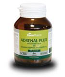 Afbeelding vanSanopharm Adrenal plus wholefood (60 capsules)