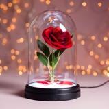 Afbeelding vanEnchanted Rose lamp van Disney