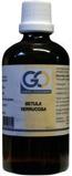 Afbeelding vanGO Betula verrucosa (100 ml)
