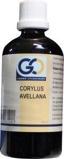 Afbeelding vanGO Corylus avellana (100 ml)