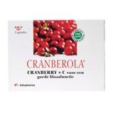 Afbeelding vanCranberola Cranberry capsules (60 capsules)