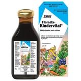 Afbeelding vanSalus Floradix kindervital (250 Vitamine