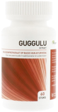 Afbeelding vanAyurveda Health Guggulu (60 tabletten)