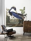 Afbeelding vanKEK Amsterdam behangpaneel Louisiana Heron (142,5x180 cm)