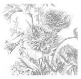 Afbeelding vanKEK Amsterdam Engraved Flowers IV WP.334 (Met Gratis Lijm)