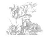 Afbeelding vanKEK Amsterdam Engraved Flowers I WP.335 (Met Gratis Lijm)