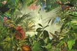 Afbeelding vanIn de Jungle 4 delig Vlies Fotobehang 368x248cm
