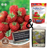 Image ofCultivation package Strawberry Framberry